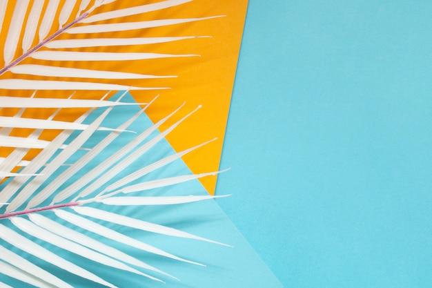 Kleurrijke geometrische kartonnen met witte palmbladeren Gratis Foto