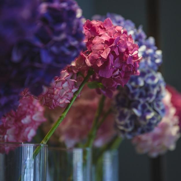 Kleurrijke seringen in afzonderlijke vazen in bloemopslag Gratis Foto