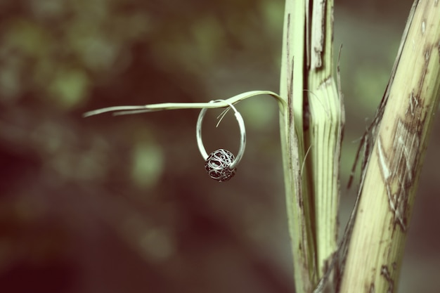 Kleurrijke sieraden Premium Foto
