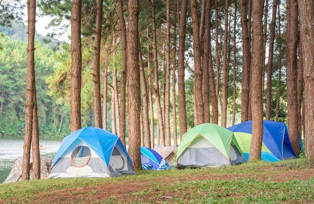Kleurrijke tent in bos op hoge berg in vakantie Premium Foto
