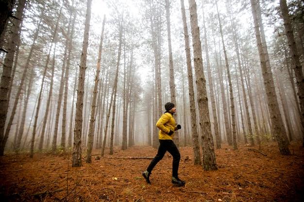 Knappe jongeman loopt in herfst bos en trainen voor trail run marathon endurance race Premium Foto