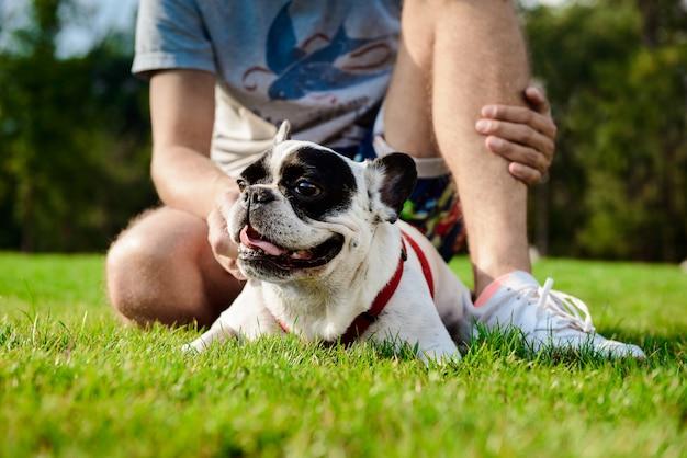 Knappe man zit met franse bulldog op gras in park Gratis Foto