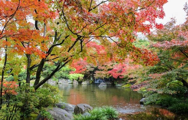 Kokoen, traditionele japanse tuin tijdens de herfstseizoen in himeji, japan Premium Foto