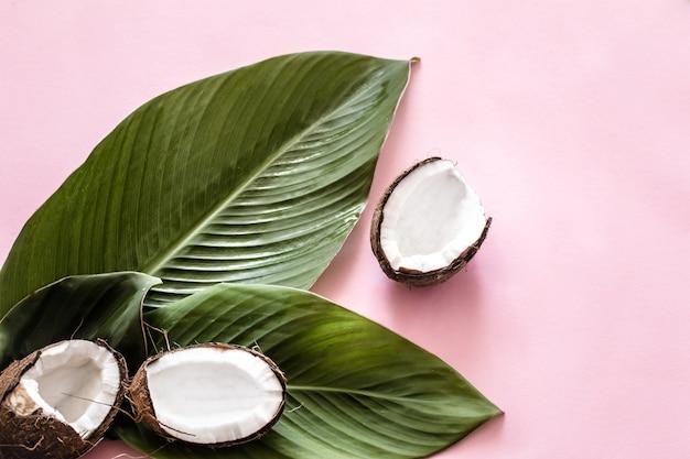 Kokos helften en tropische bladeren Gratis Foto