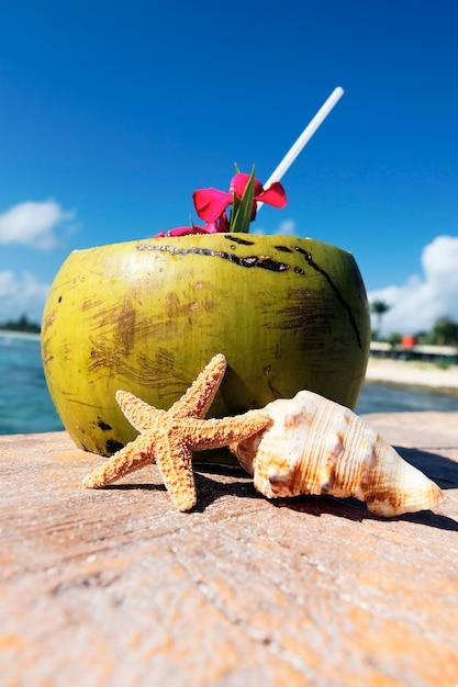 Kokosnoot met rietje en zeeschelpen Gratis Foto