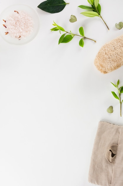 Kom met kruidenzout; bladeren en loofah geïsoleerd op witte achtergrond Gratis Foto