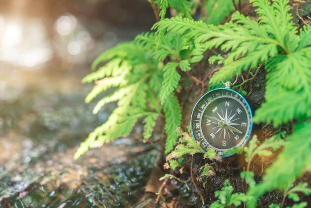 Kompas op de rots met groene plant dichtbij waterval met zonlicht. reis concept. Premium Foto
