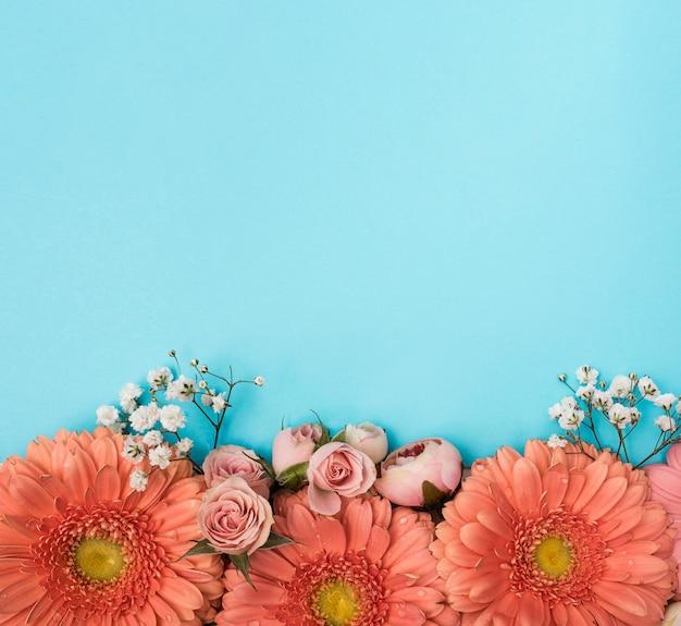 Kopieer de ruimte lente gerbera bloemen Gratis Foto