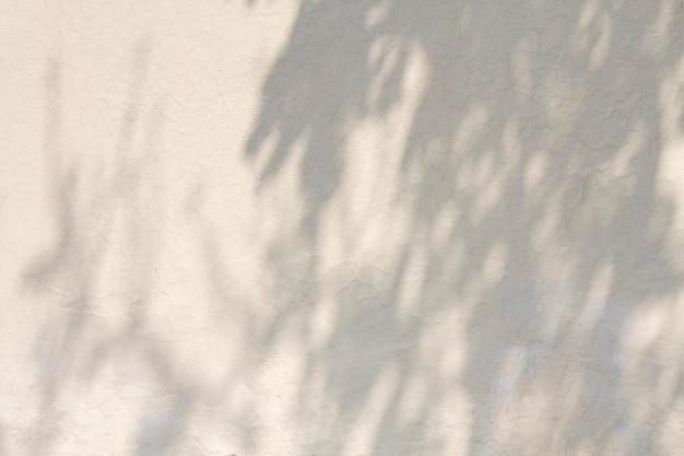 Kopieer ruimte witte betonnen muur met schaduwen Premium Foto