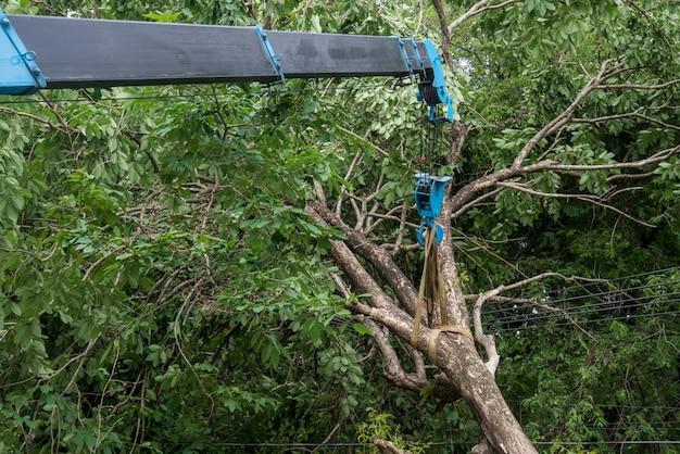 Kraan opheffing gebroken boom Premium Foto