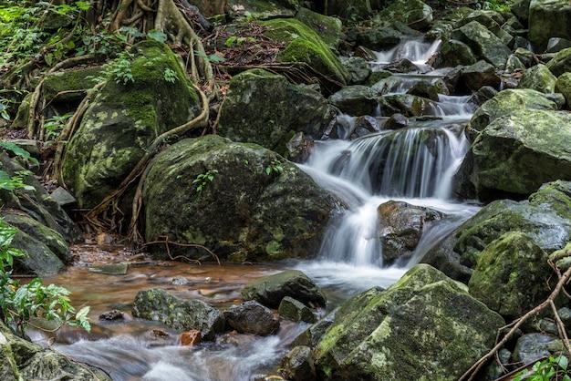 Krok-e-dok waterval en regenwoud op berg in het nationale park van khao yai, thailand Premium Foto