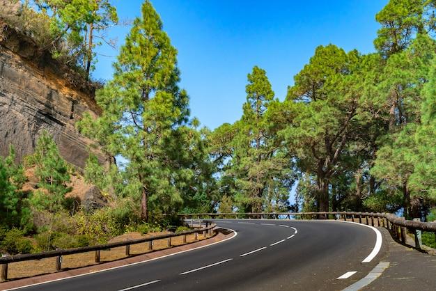 Kronkelende weg met houten hek in een bergbos. heldergroen bos tegen blauwe hemel. Gratis Foto