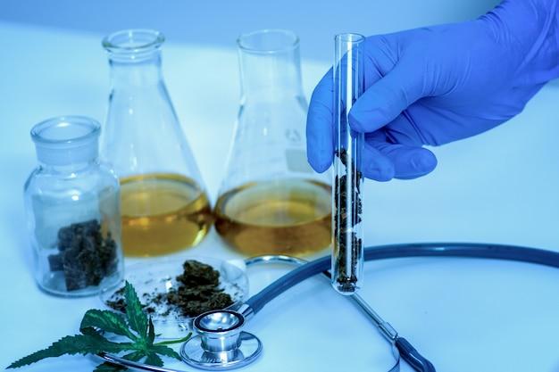 Kruidengeneeswijze cannabis in laboratorium. Premium Foto