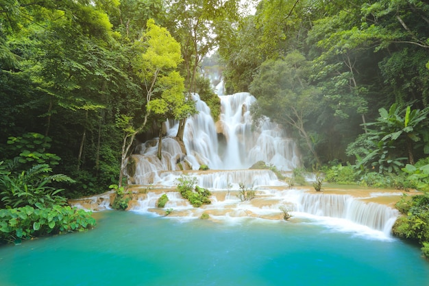 Kuang si-watervallen in luang prabang laos. lange blootstelling. prachtige waterval in wilde jungle Premium Foto