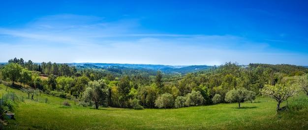Kunst landelijk landschap. veld en gras. zomertijd op het platteland Gratis Foto