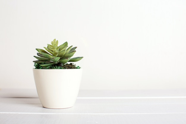 Kunstbloemen op een witte achtergrond, woondecoratie Premium Foto