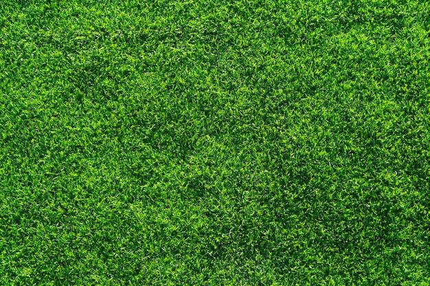 Kunstgras textuur Premium Foto