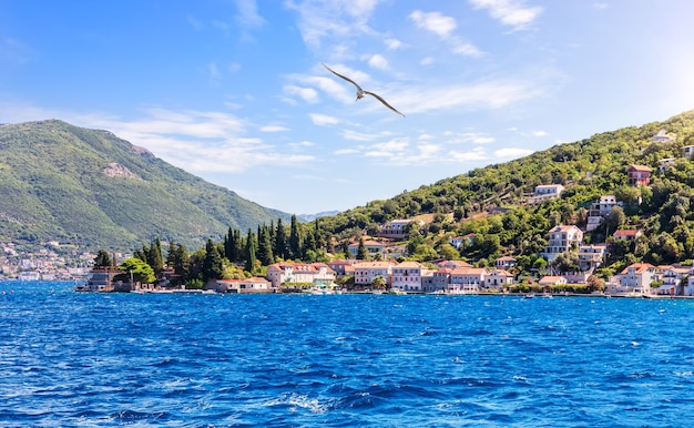 Kust van de adriatische zee in de baai van kotor, montenegro. Premium Foto