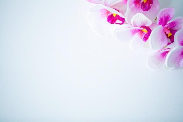 Kuuroord en wellnessscène, orchideebloem op de houten pastelkleur Premium Foto