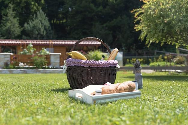 Lade en mand met vers voedsel op groen gras Gratis Foto