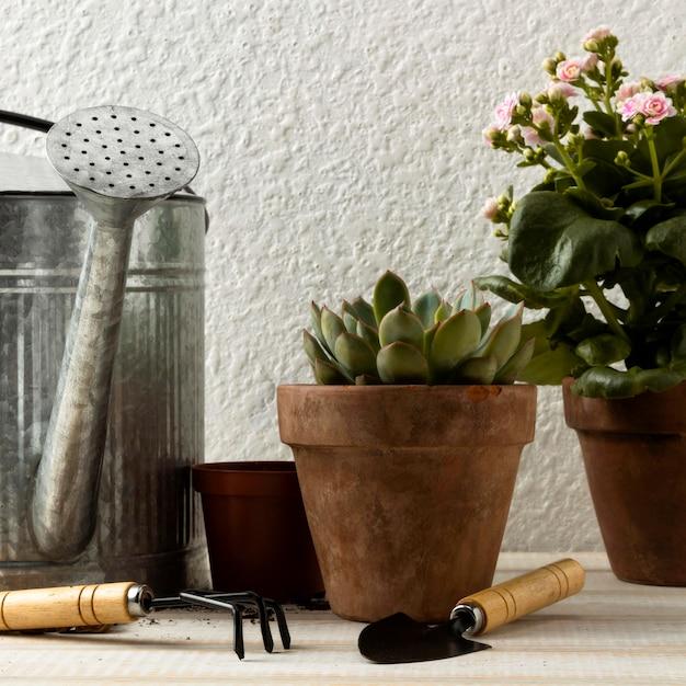 Lage hoek bloempotten en gereedschappen Gratis Foto