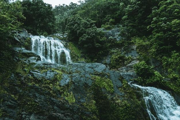 Lage hoek die van een waterval in het midden van een groen bos is ontsproten Gratis Foto