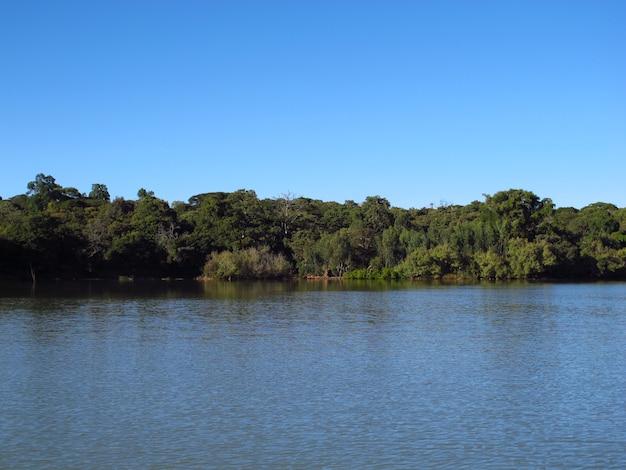 Lake tana in ethiopië, afrika Premium Foto