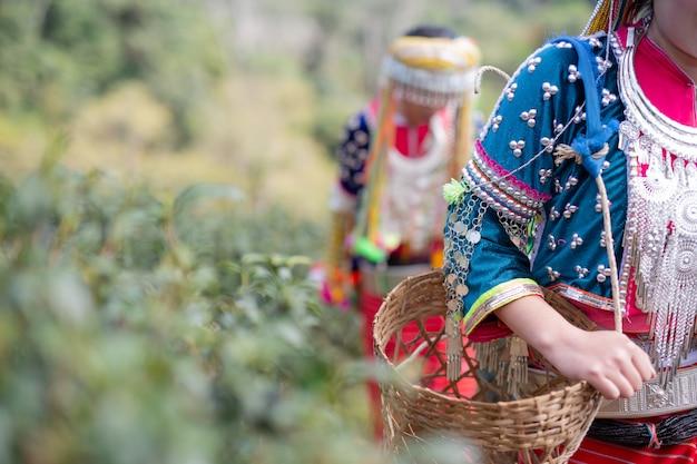 Landbouw van vrouwen in de heuvels Gratis Foto