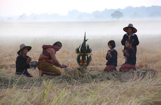 Landbouwer die oogstceremonie in mistig padieveld doet Premium Foto