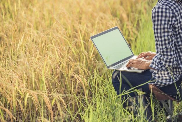 Landbouwer in padieveld met laptop Gratis Foto