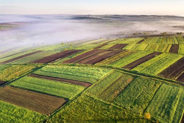 Landbouwlandschap van lucht op zonnige de lentedageraad. Premium Foto
