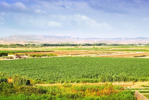 Landelijk landschap in aragon, spanje Gratis Foto