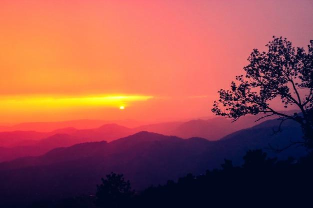 Landschap hout rotsachtige vingers dromen Gratis Foto