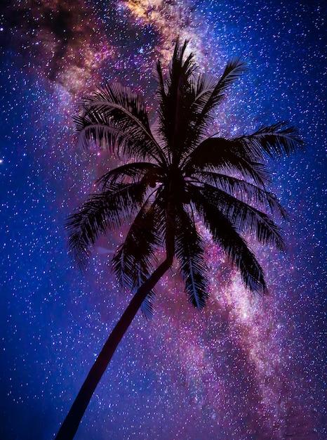 Landschap met melkweg. nachtelijke hemel met sterren en silhouet kokospalm boom op de berg. foto met lange belichtingstijd. Premium Foto