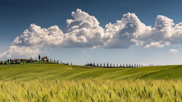 Landschap shot van val d'orcia toscane italië met een bewolkte zonnige blauwe hemel Gratis Foto