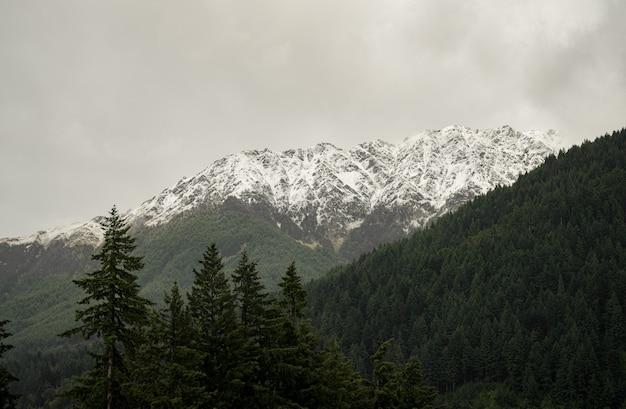 Landschap van bergen bedekt met bossen en sneeuw onder een bewolkte hemel Gratis Foto