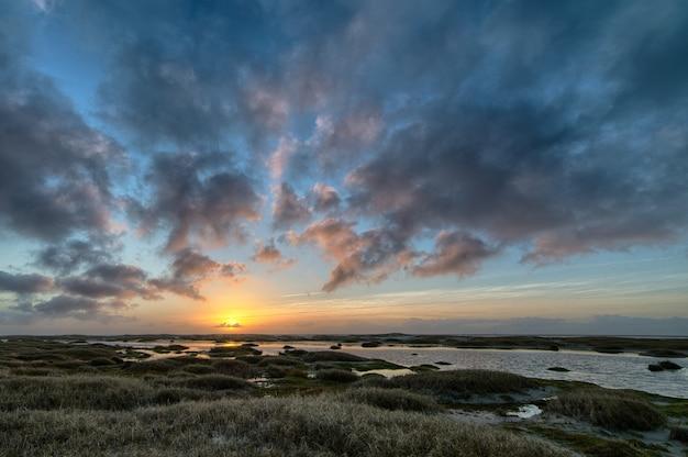 Landschap van de kust bedekt met het gras, omringd door de zee tijdens een prachtige zonsondergang Gratis Foto