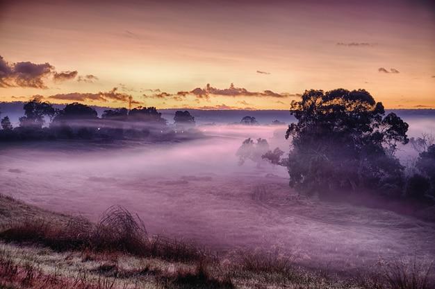 Landschap van een veld bedekt met gras en mist onder het zonlicht tijdens een adembenemende zonsondergang Gratis Foto