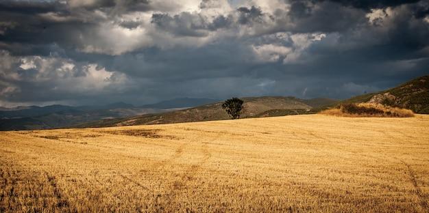 Landschap van een veld omgeven door heuvels onder de bewolkte hemel Gratis Foto