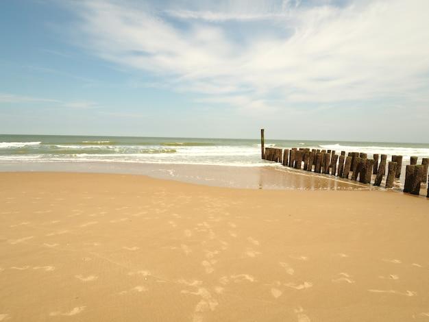 Landschap van een zandstrand met aan de zijkanten een houten golfbreker in een heldere zonnige blauwe lucht Gratis Foto