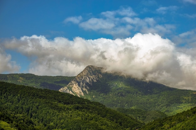 Landschap van heuvels bedekt met bossen onder het zonlicht en een bewolkte hemel Gratis Foto