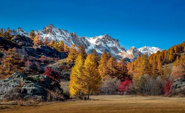 Landschapsmening van bergen bedekt met sneeuw en herfst bomen Gratis Foto