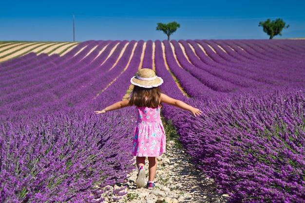 Lavendel veld Premium Foto