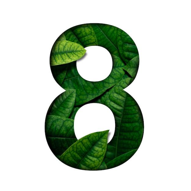 Lefas nummer 8 gemaakt van echte levende bladeren met kostbaar papier gesneden vorm van nummer. bladeren lettertype. Premium Foto