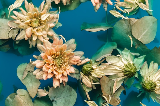 Leg delicate bloemen plat in blauw water Gratis Foto