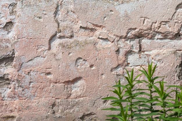 Lege oude gips muur textuur. geschilderde grungy muuroppervlak. grunge rode stonewall achtergrond. shabby gevel van een gebouw met beschadigde pleister. Premium Foto