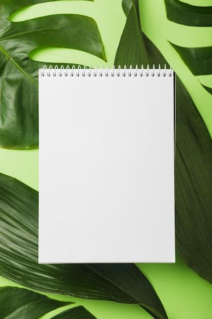 Lege spiraalvormige blocnote over groene bladeren op achtergrond Gratis Foto