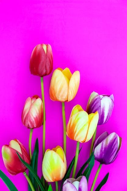 Lente bloem van meerdere kleuren tulpen op roze achtergrond, flat lag afbeelding voor vakantie wenskaart voor moederdag, valentijnsdag, vrouwendag Premium Foto
