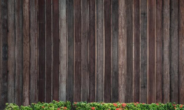 Lente groene bloem spike over houten achtergrond, oude houten patroon muur voor achtergrond Premium Foto