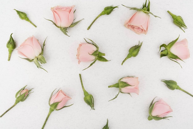 Lente roze bloemen bovenaanzicht Gratis Foto